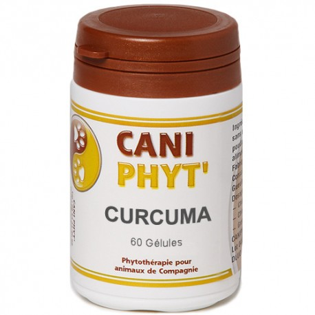 Curcuma Caniphyt Chiens Chats